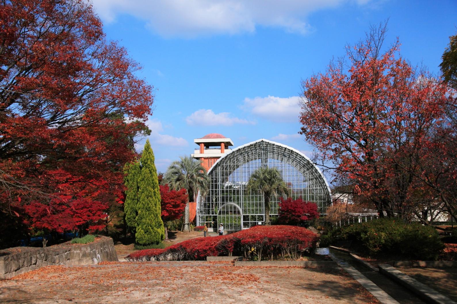 花畑園芸公園