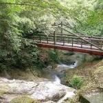 油山市民の森・水の森