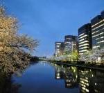 舞鶴公園の堀端